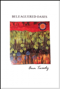 "Cover of ""beleaguered Oases"" book"